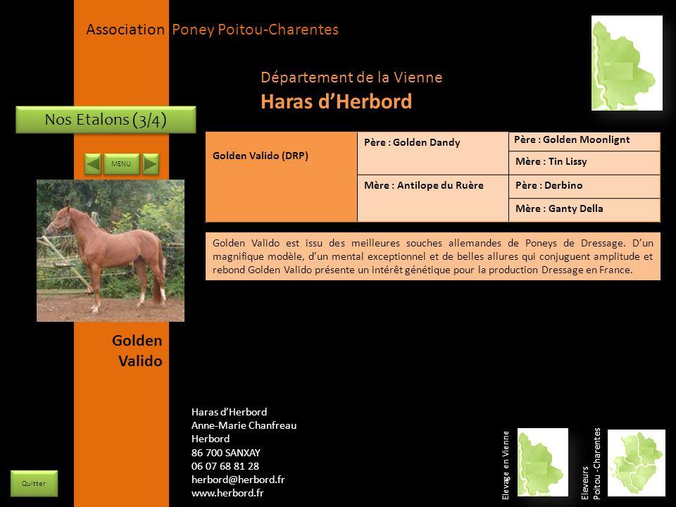 Haras d'Herbord Département de la Vienne Nos Etalons (3/4)