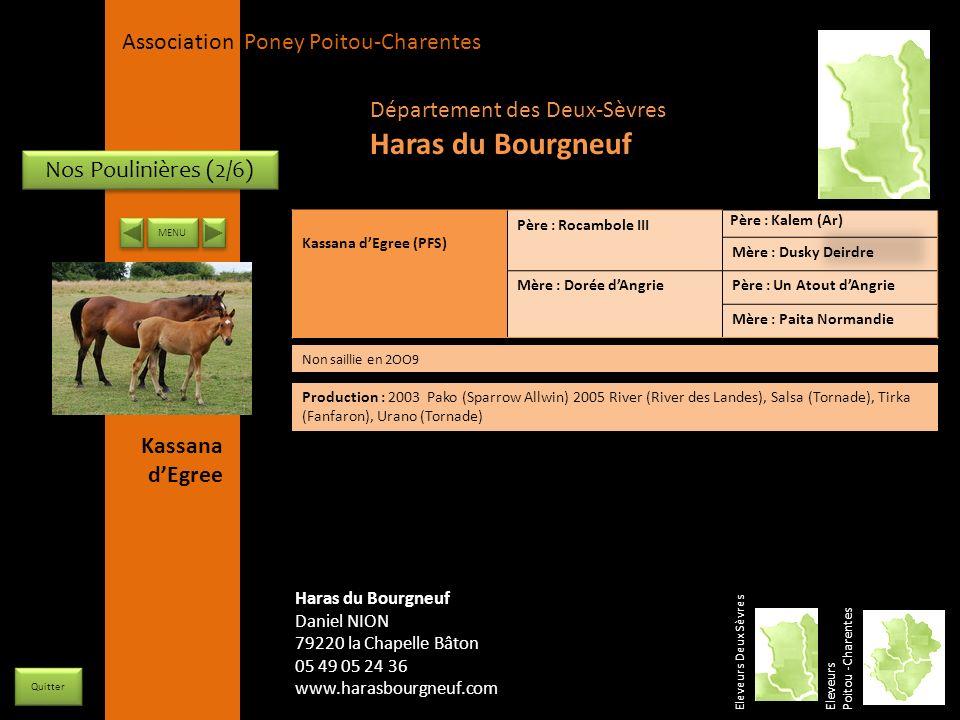 Haras du Bourgneuf Département des Deux-Sèvres Nos Poulinières (2/6)