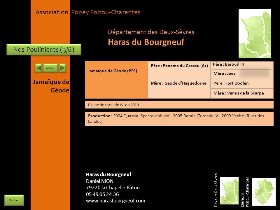 Haras du Bourgneuf Département des Deux-Sèvres Nos Poulinières (3/6)