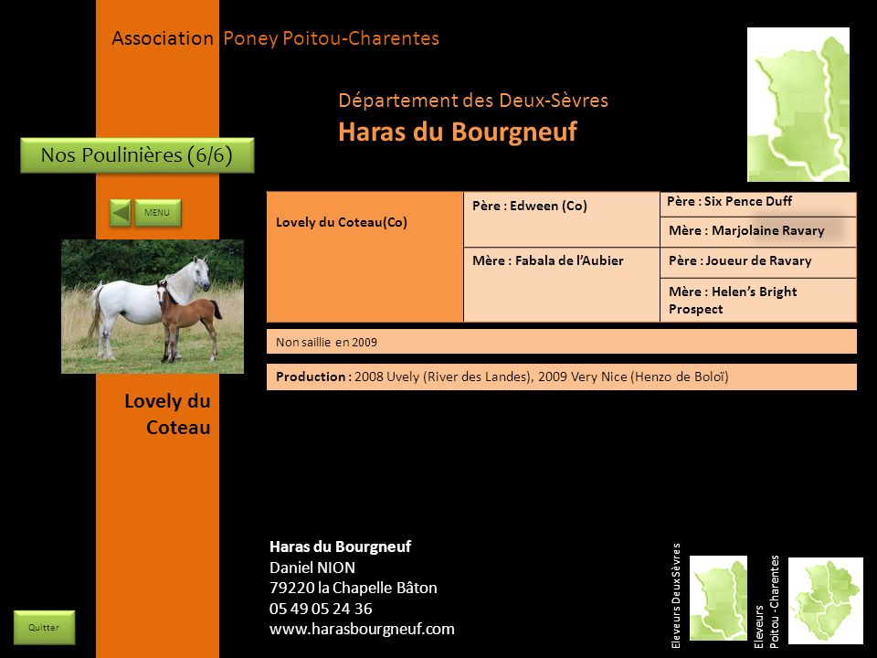 Haras du Bourgneuf Département des Deux-Sèvres Nos Poulinières (6/6)