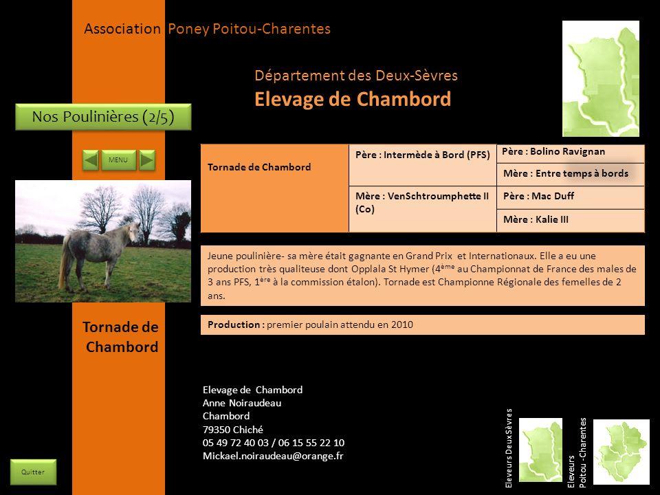 Elevage de Chambord Département des Deux-Sèvres Nos Poulinières (2/5)