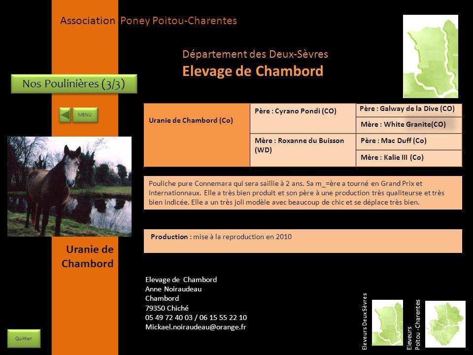Elevage de Chambord Département des Deux-Sèvres Nos Poulinières (3/3)