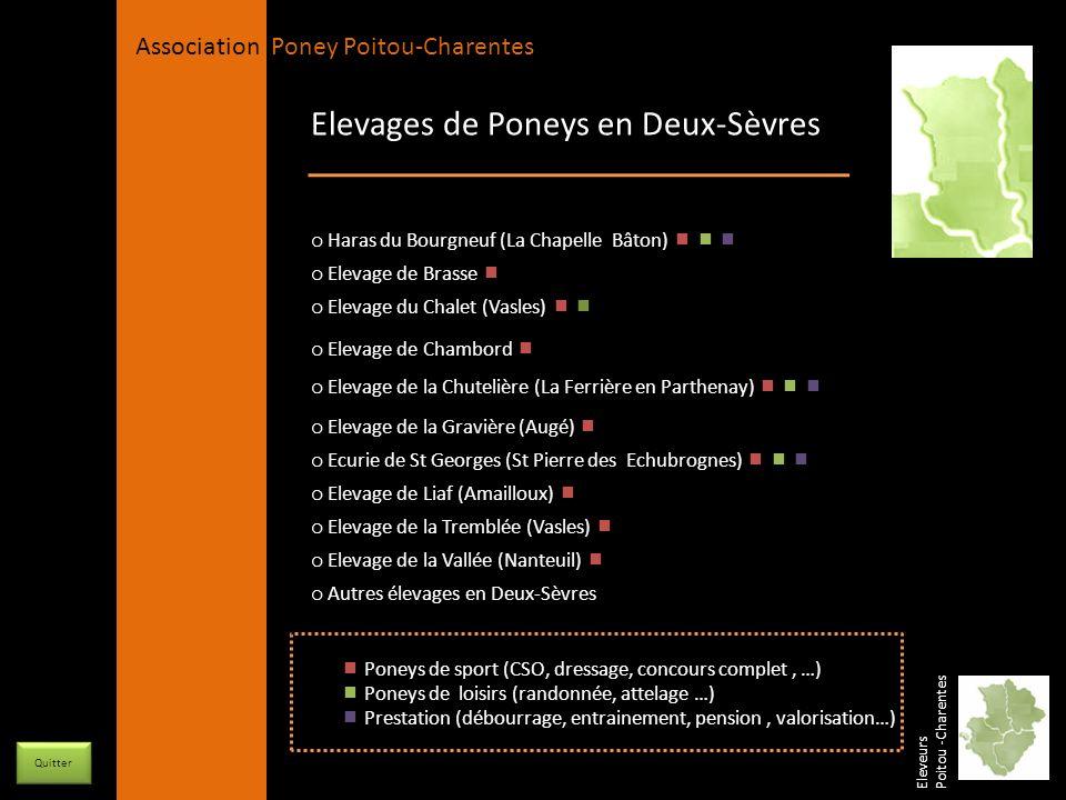 Elevages de Poneys en Deux-Sèvres