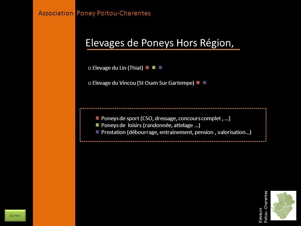 Elevages de Poneys Hors Région,