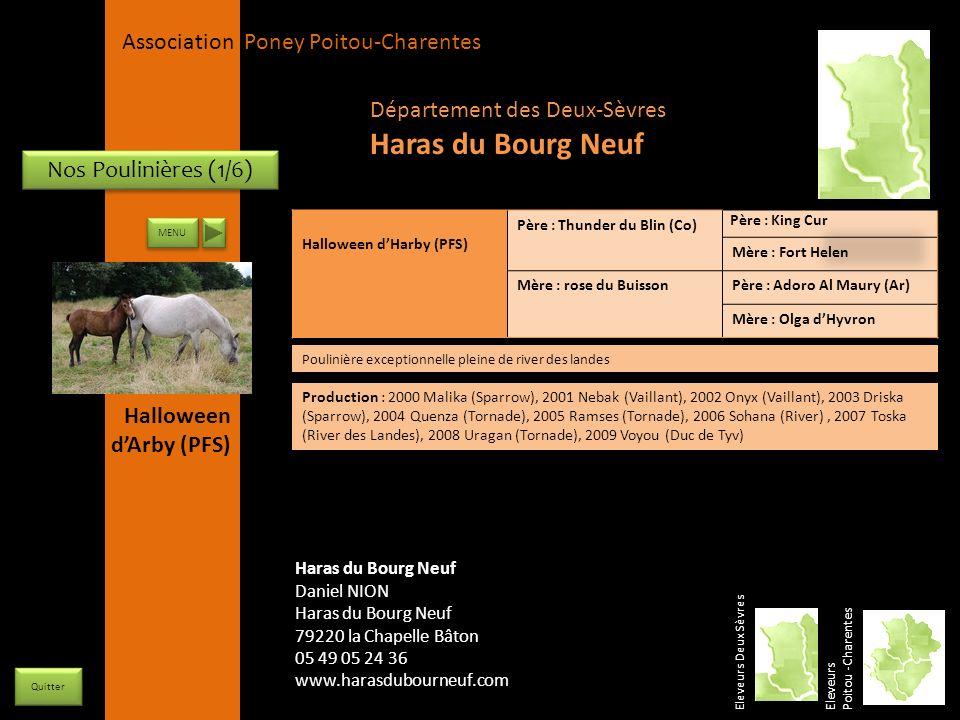 Haras du Bourg Neuf Département des Deux-Sèvres Nos Poulinières (1/6)