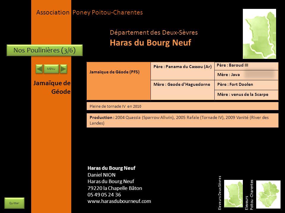 Haras du Bourg Neuf Département des Deux-Sèvres Nos Poulinières (3/6)