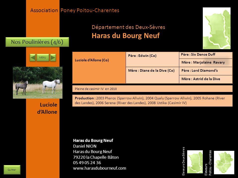Haras du Bourg Neuf Département des Deux-Sèvres Nos Poulinières (4/6)
