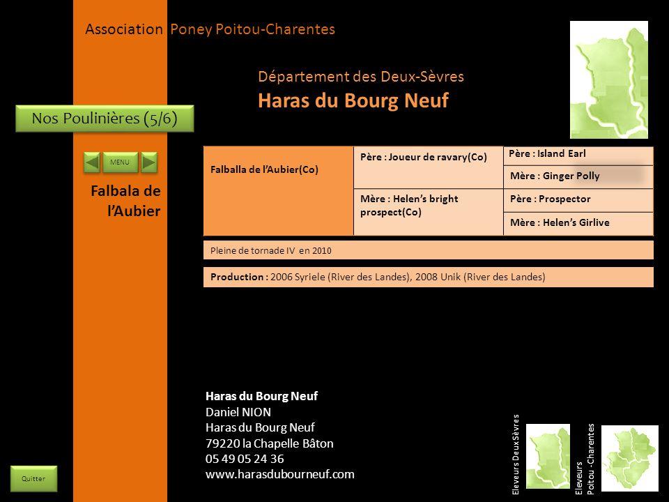 Haras du Bourg Neuf Département des Deux-Sèvres Nos Poulinières (5/6)