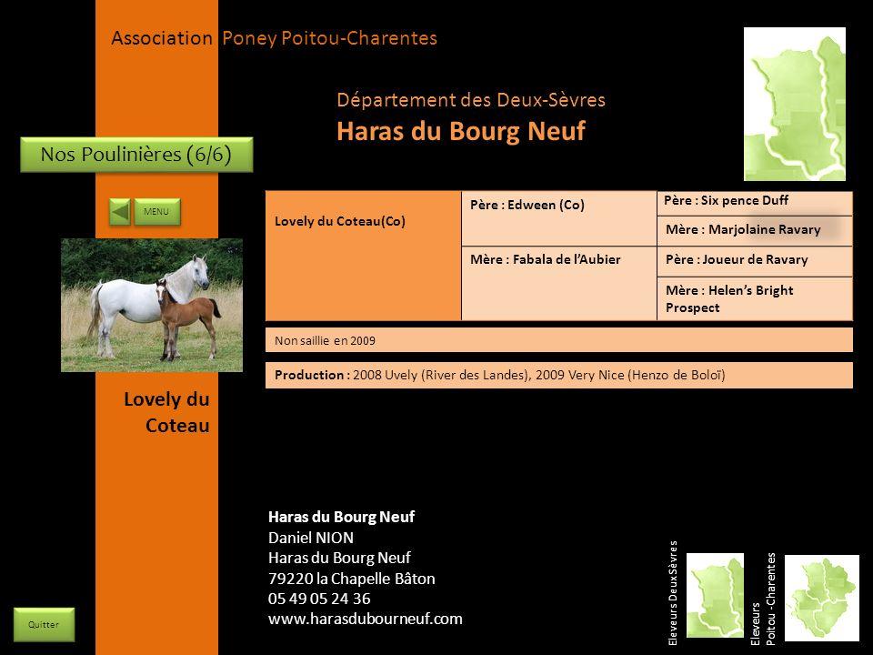 Haras du Bourg Neuf Département des Deux-Sèvres Nos Poulinières (6/6)