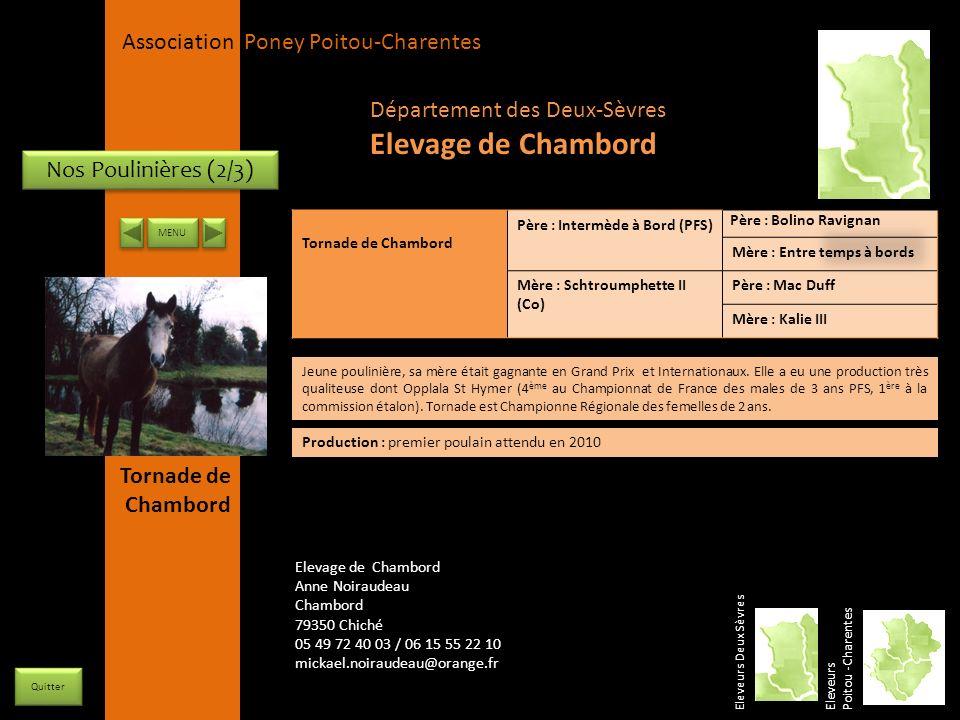 Elevage de Chambord Département des Deux-Sèvres Nos Poulinières (2/3)