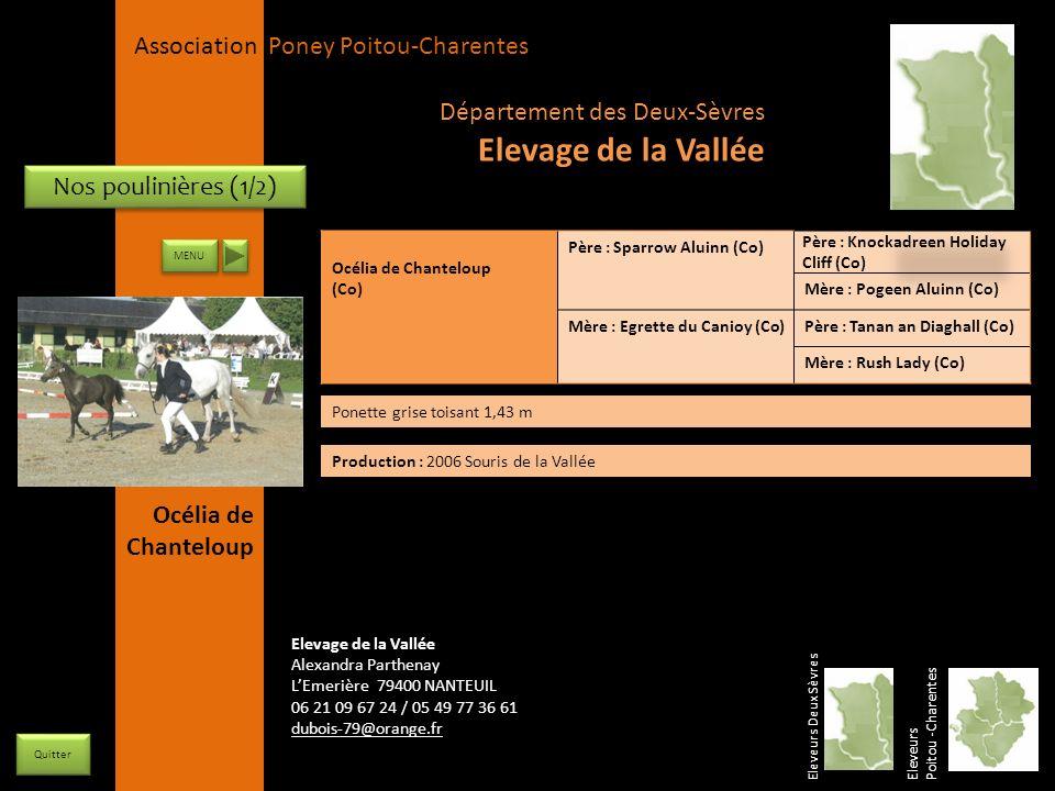 Elevage de la Vallée Département des Deux-Sèvres Nos poulinières (1/2)
