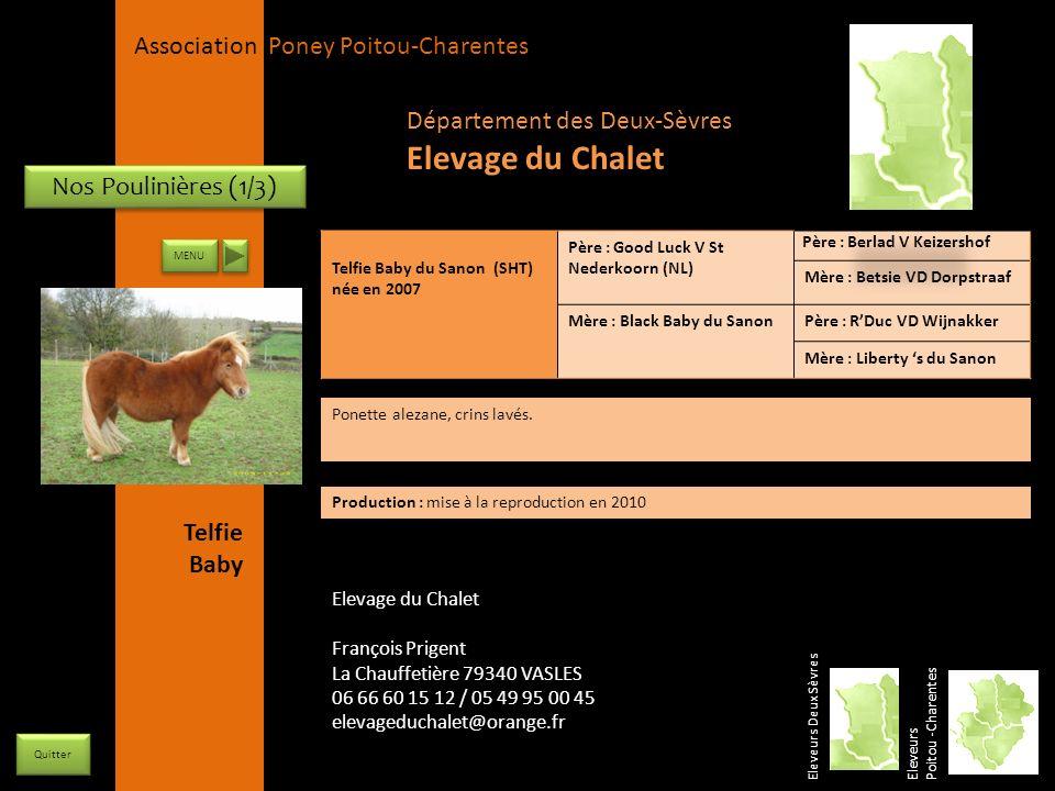 Elevage du Chalet Département des Deux-Sèvres Nos Poulinières (1/3)