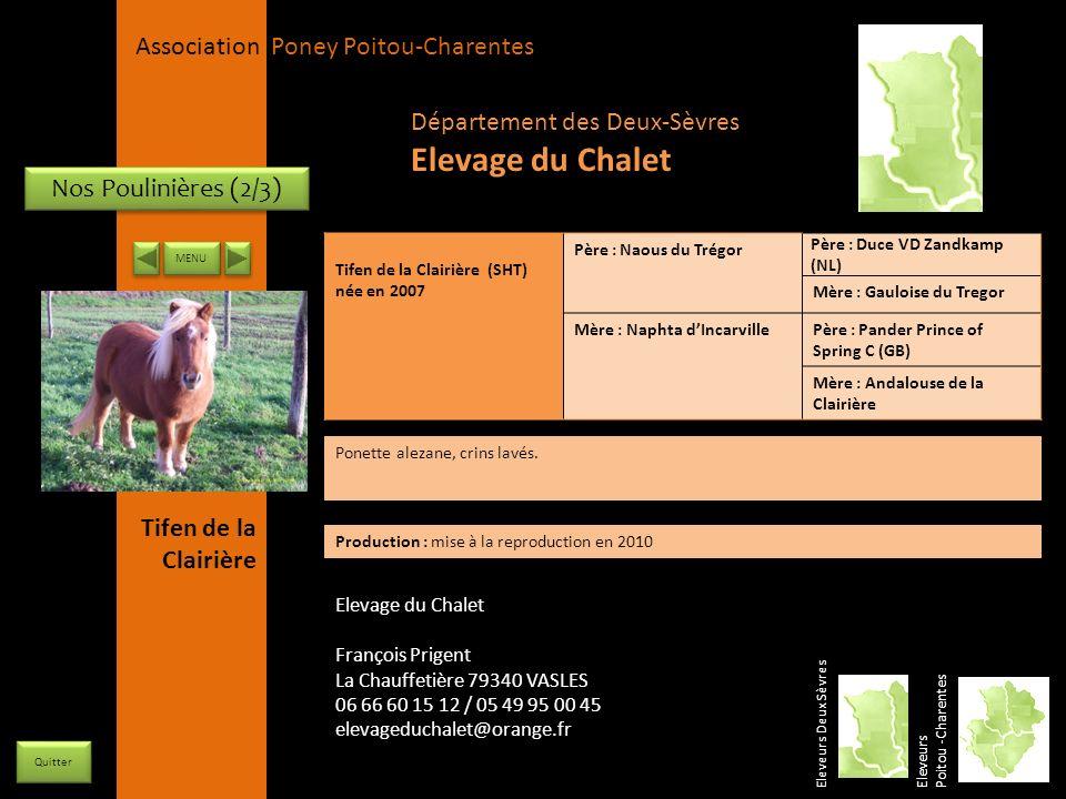 Elevage du Chalet Département des Deux-Sèvres Nos Poulinières (2/3)