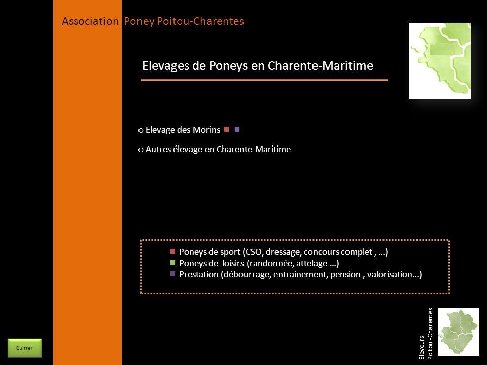 Elevages de Poneys en Charente-Maritime