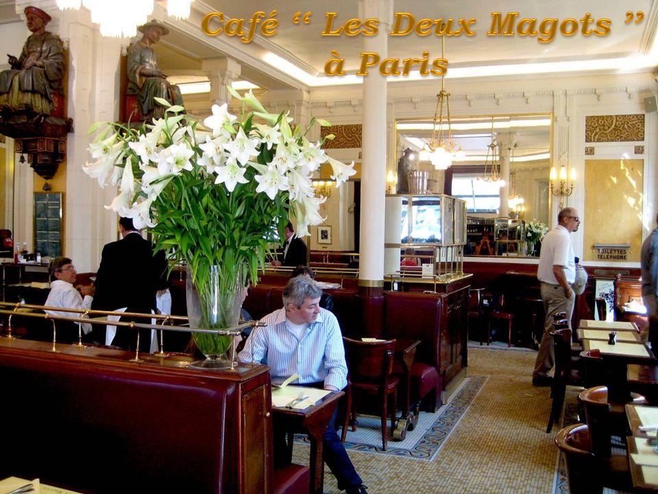 Café '' Les Deux Magots ''