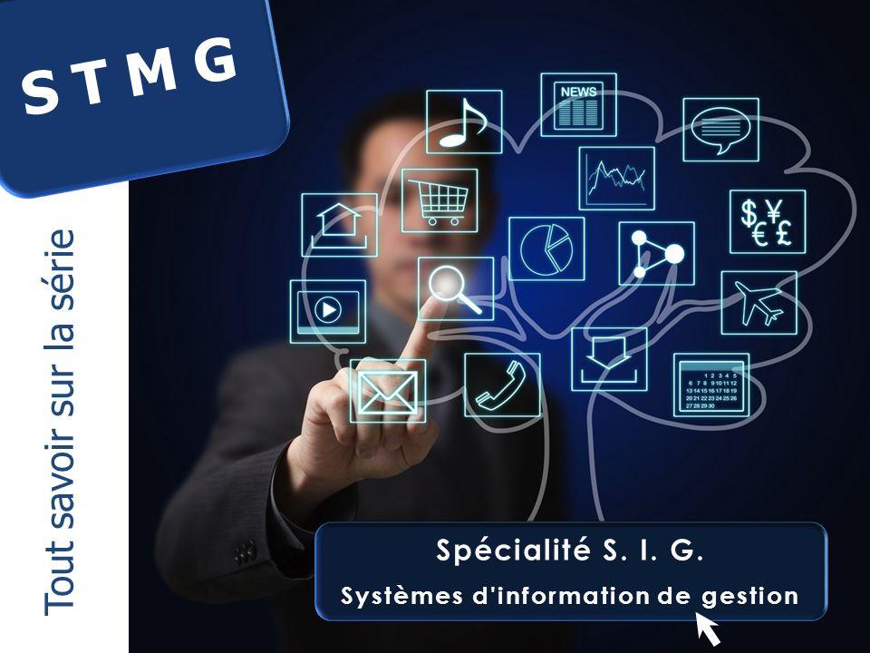 Systèmes d information de gestion