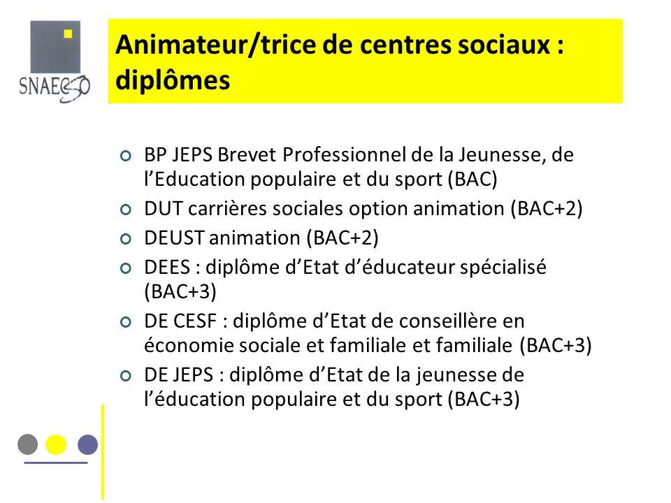 Animateur/trice de centres sociaux : diplômes