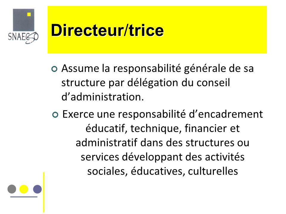 Directeur/trice Assume la responsabilité générale de sa structure par délégation du conseil d'administration.