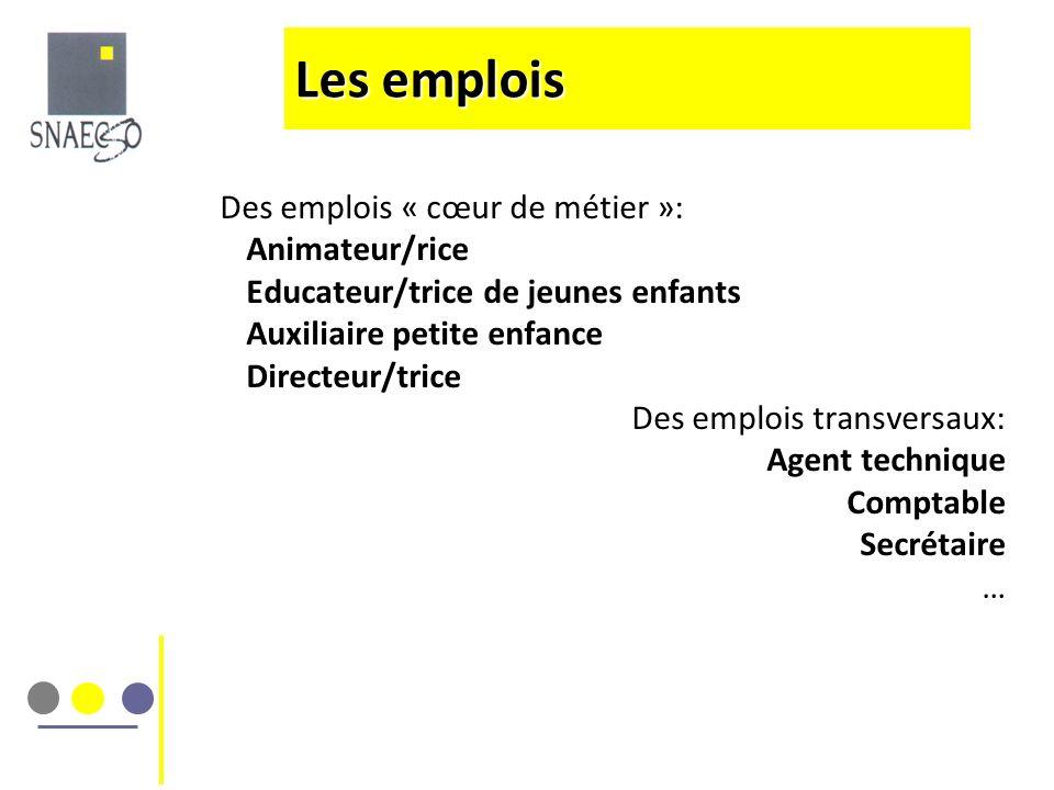 Les emplois Des emplois « cœur de métier »: Animateur/rice