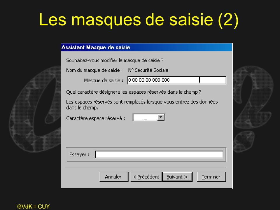 Les masques de saisie (2)