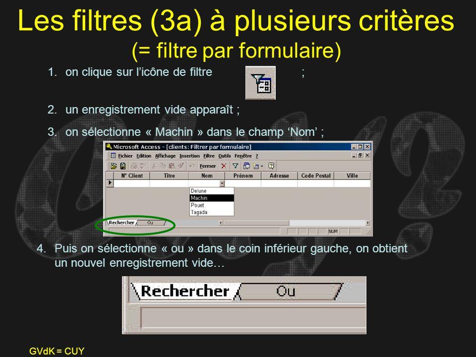 Les filtres (3a) à plusieurs critères (= filtre par formulaire)