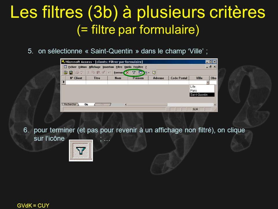 Les filtres (3b) à plusieurs critères (= filtre par formulaire)