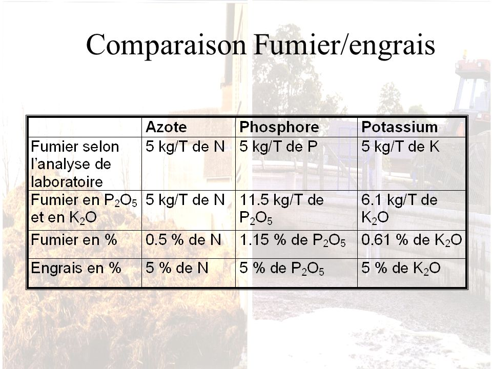 Comparaison Fumier/engrais