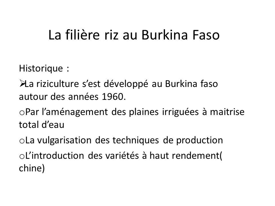 La filière riz au Burkina Faso