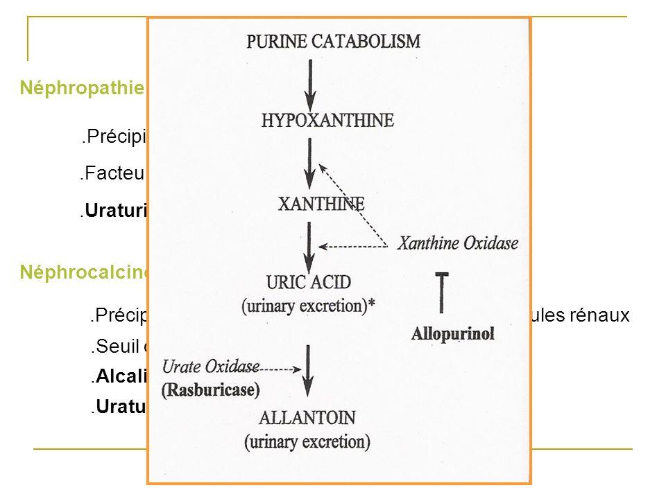 .Précipitation de Ph/Ca dans l'interstitium et les tubules rénaux