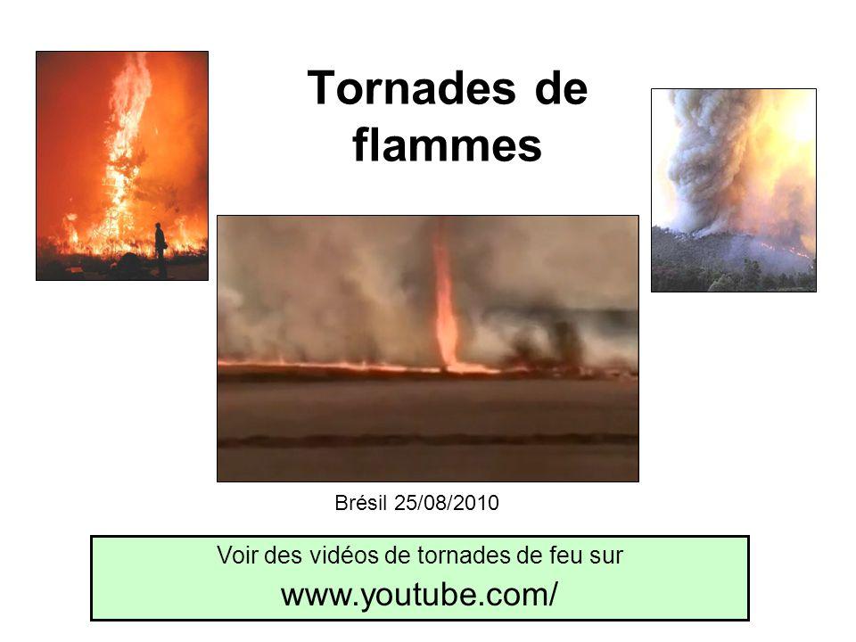 Voir des vidéos de tornades de feu sur