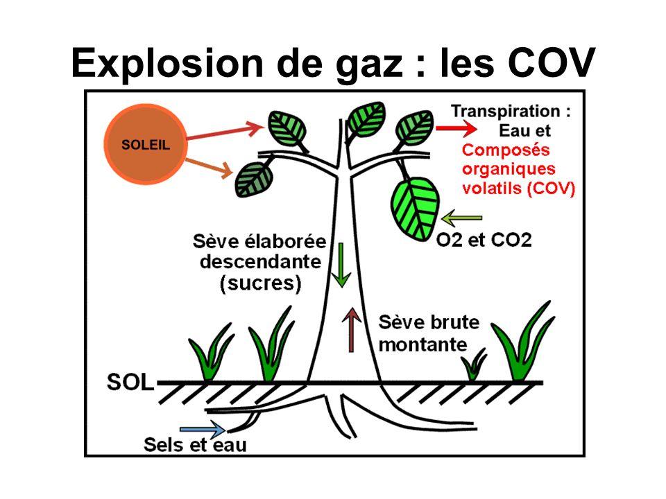 Explosion de gaz : les COV