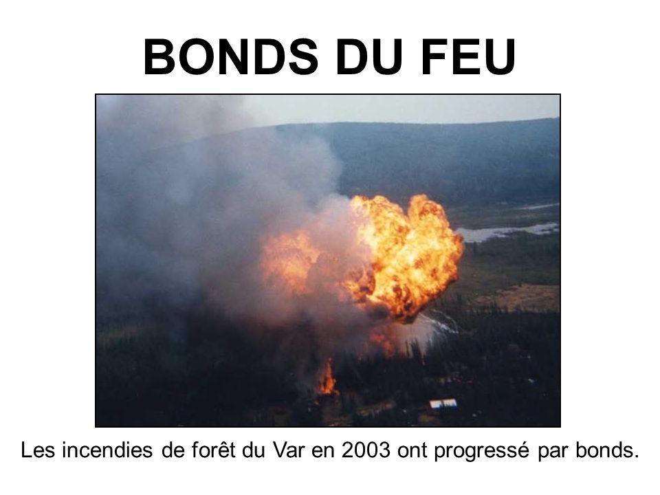 Les incendies de forêt du Var en 2003 ont progressé par bonds.
