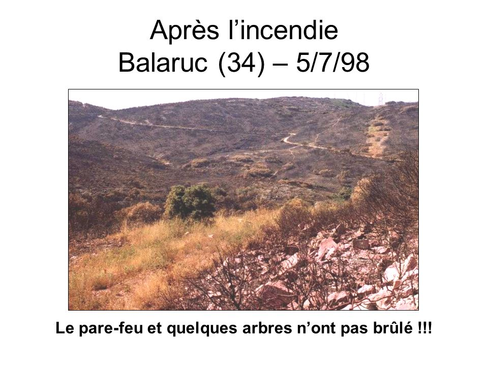 Après l'incendie Balaruc (34) – 5/7/98