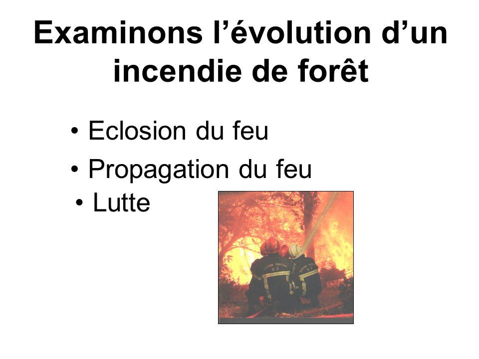 Examinons l'évolution d'un incendie de forêt