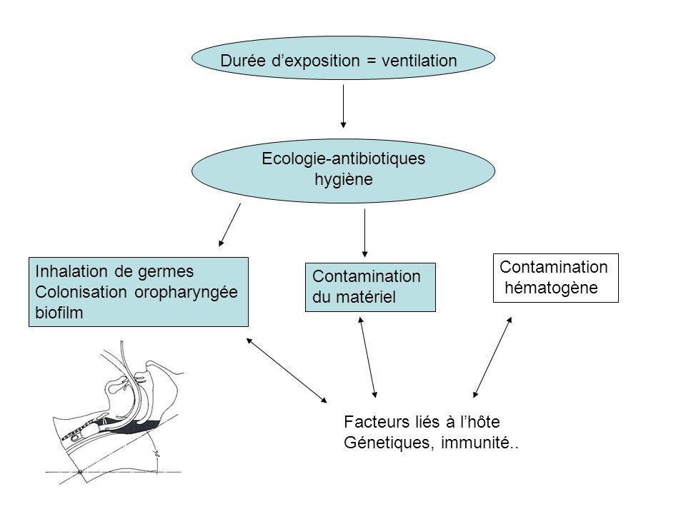 Ecologie-antibiotiques