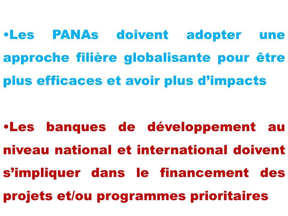 Les PANAs doivent adopter une approche filière globalisante pour être plus efficaces et avoir plus d'impacts