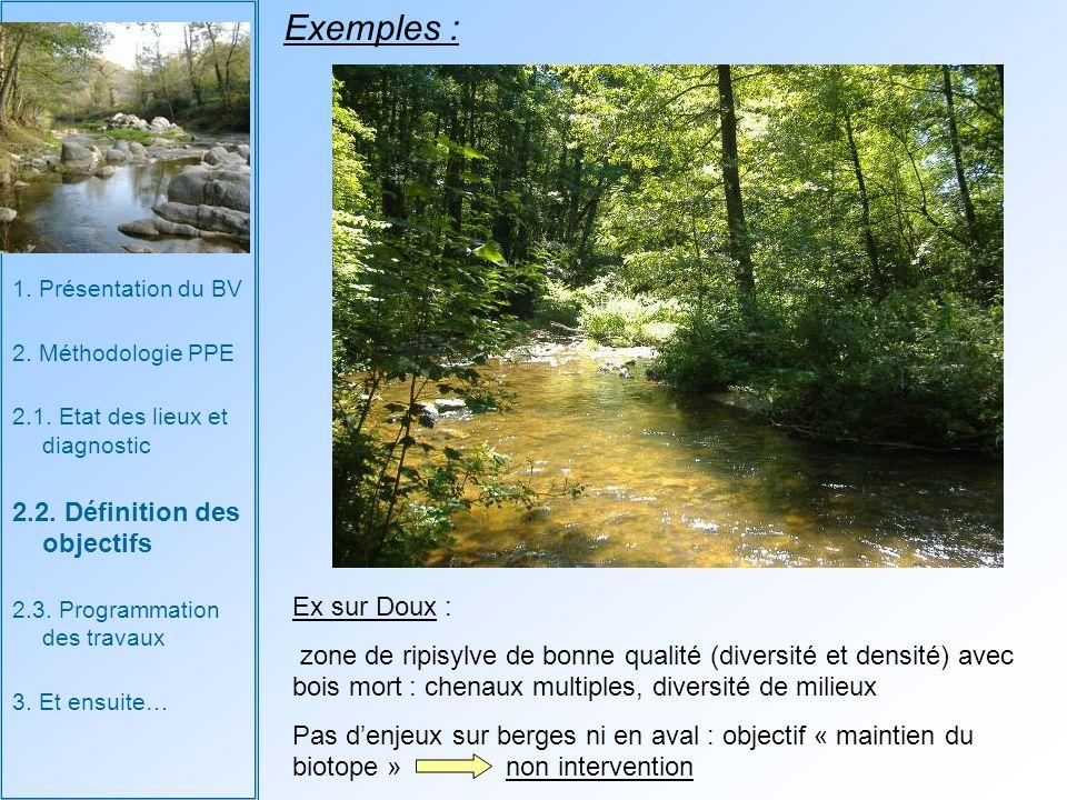 Exemples : 2.2. Définition des objectifs Ex sur Doux :