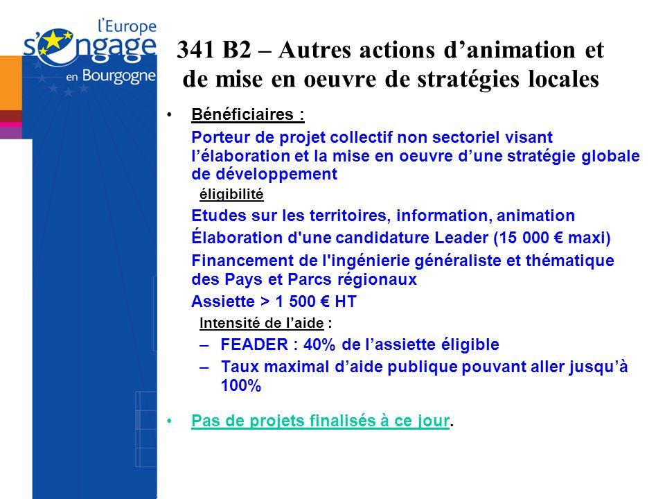 341 B2 – Autres actions d'animation et de mise en oeuvre de stratégies locales