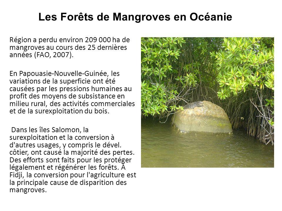 Les Forêts de Mangroves en Océanie