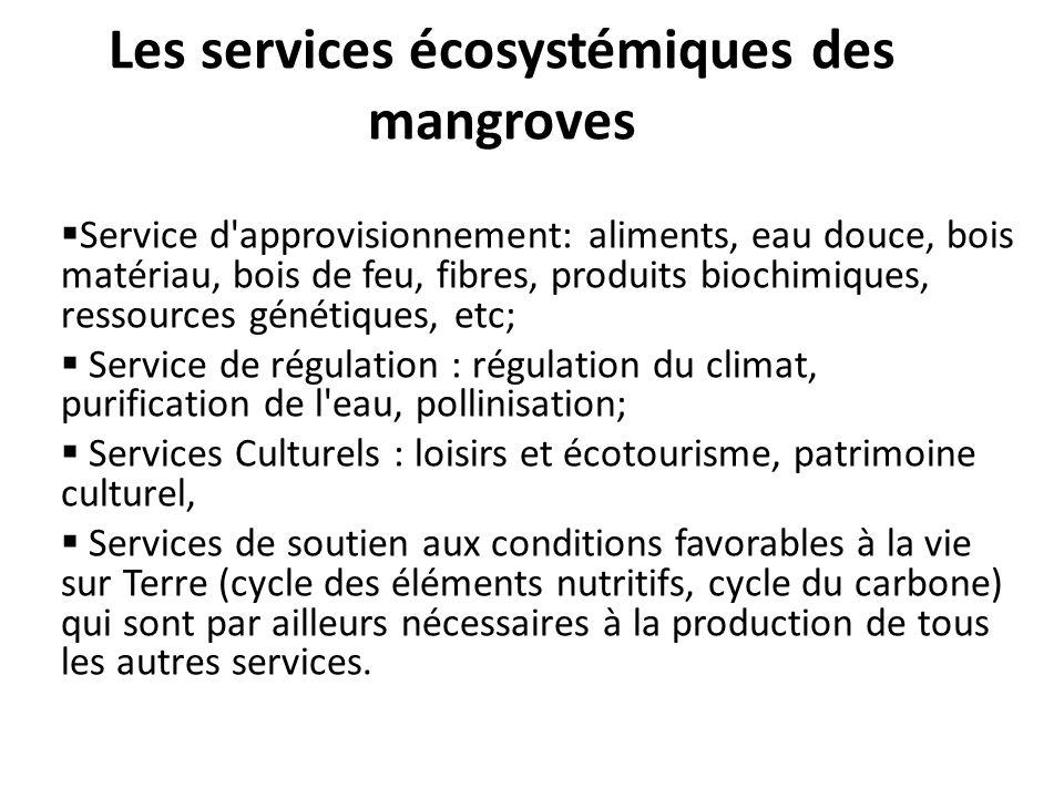 Les services écosystémiques des mangroves