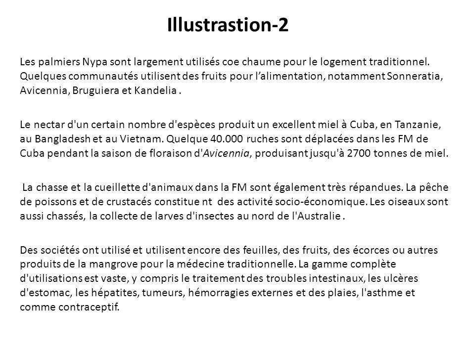 Illustrastion-2