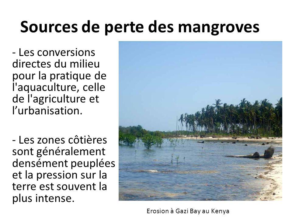 Sources de perte des mangroves