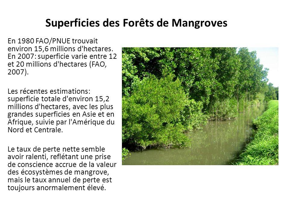 Superficies des Forêts de Mangroves