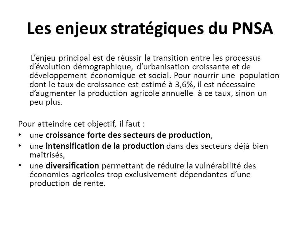 Les enjeux stratégiques du PNSA