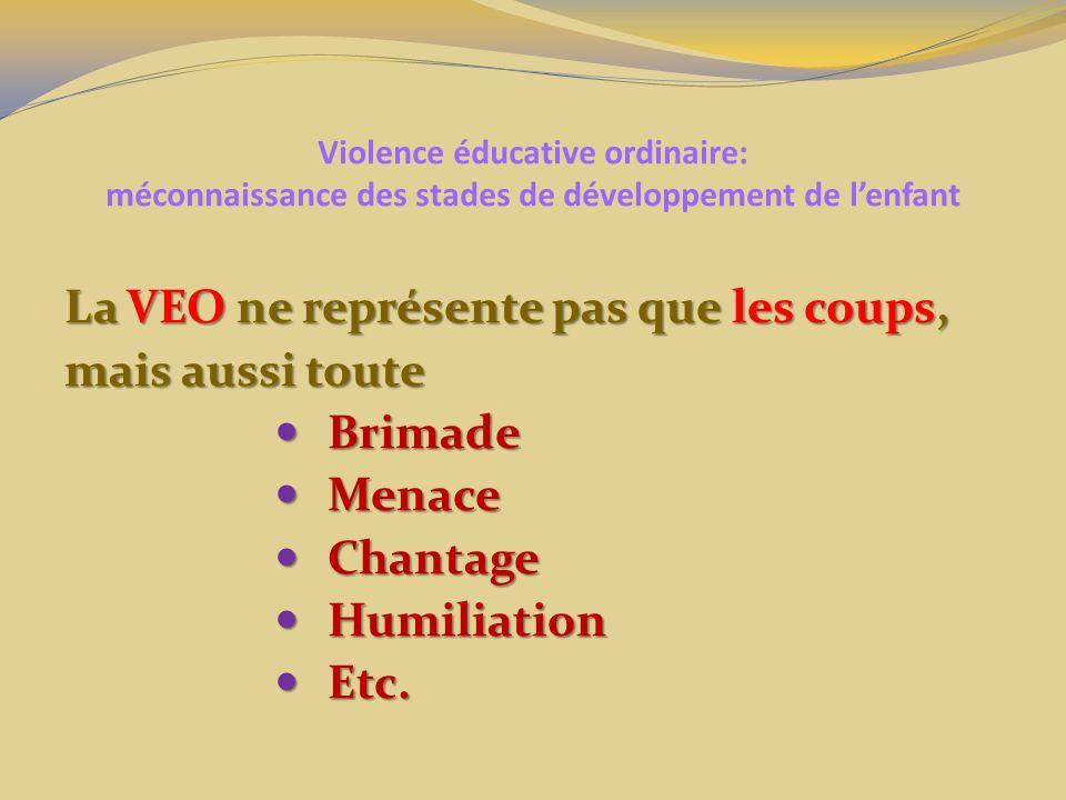 La VEO ne représente pas que les coups, mais aussi toute Brimade