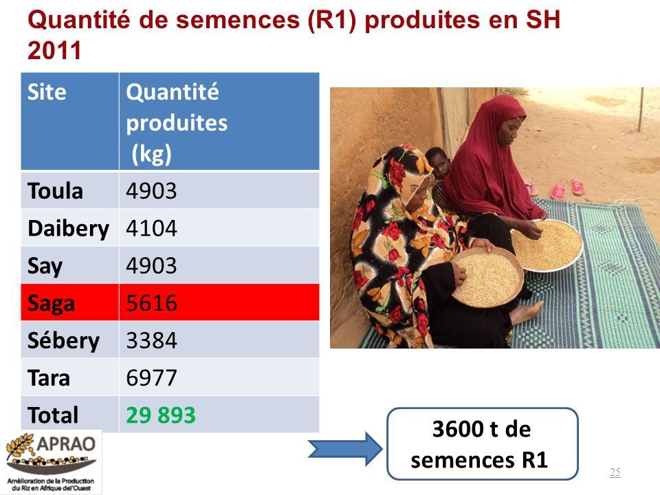 Quantité de semences (R1) produites en SH 2011