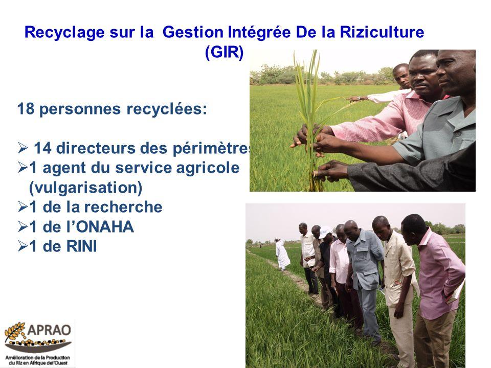 Recyclage sur la Gestion Intégrée De la Riziculture (GIR)