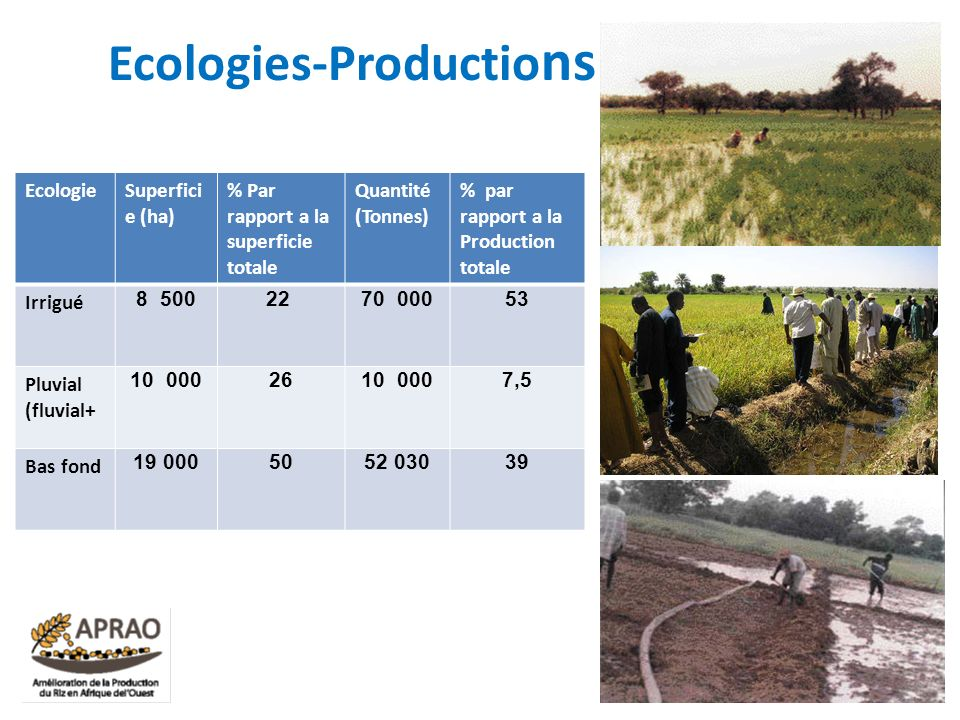 Ecologies-Productions