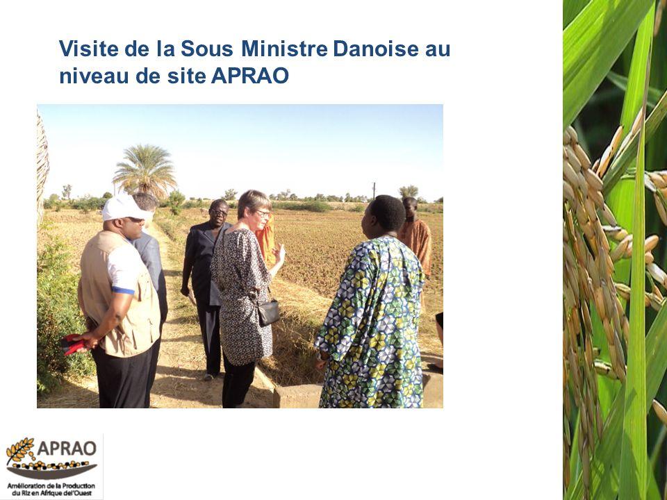 Visite de la Sous Ministre Danoise au niveau de site APRAO