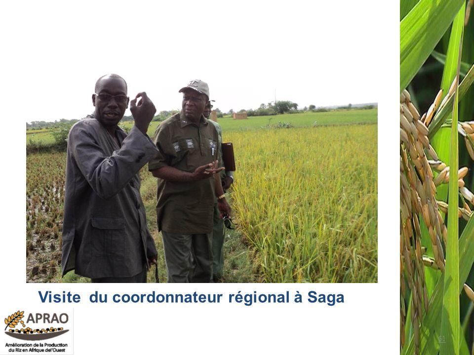 Visite du coordonnateur régional à Saga